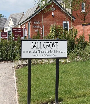 ball grove longhedge