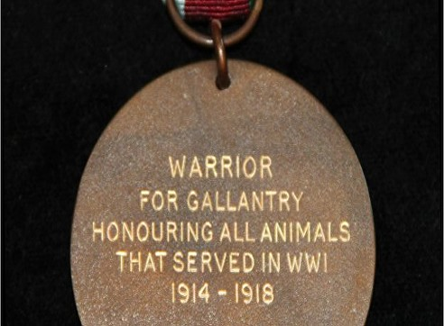 warrior medal